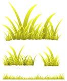 Gelbes Gras Stockfotografie