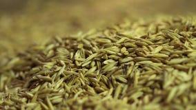 Gelbes Haferkorn fallend auf Sackleinen, gesund und Bioprodukt, Landwirtschaft stock footage