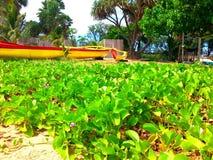 Gelbes hawaiisches Kanu mit rotem Streifen Stockfotos