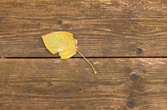 Gelbes Herbstblatt auf einem Hintergrund der Holzbank Lizenzfreie Stockbilder