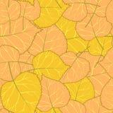 Gelbes Herbstmuster von Blättern Stockfotos