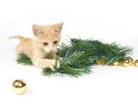 Gelbes Kätzchen, das mit Weihnachtsdekorationen spielt Lizenzfreie Stockfotografie