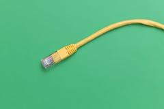 Gelbes Kabel des Netzes RJ45 Lizenzfreies Stockfoto