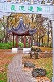 Gelbes Laub, Lettland, Riga lizenzfreies stockfoto