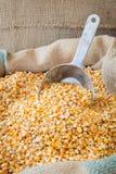 Gelbes Maiskorn in einem Leinwandbeutel Stockfotografie