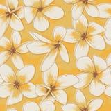 Gelbes nahtloses mit Blumenmuster Stockbilder