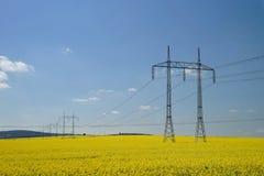 Gelbes Rapsfeld und Hochspannungsleitungen stockbilder