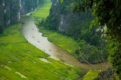 Gelbes Reisfeld auf Ngo Dong-Fluss in Tam Coc Bich Dong von der Gebirgsdraufsicht in Ninh Binh Lizenzfreie Stockfotos