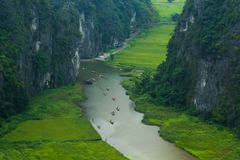 Gelbes Reisfeld auf Ngo Dong-Fluss in Tam Coc Bich Dong von der Gebirgsdraufsicht in Ninh Binh Lizenzfreie Stockbilder