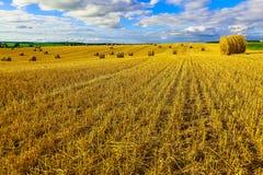 Gelbes rundes Straw Bales auf Stoppel-Feld Lizenzfreie Stockfotografie