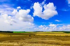 Gelbes rundes Straw Bales auf Stoppel-Feld Stockfotos
