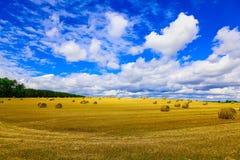 Gelbes rundes Straw Bales auf Stoppel-Feld Lizenzfreies Stockbild