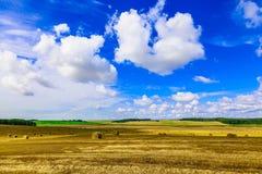 Gelbes rundes Straw Bales auf Stoppel-Feld Stockbild