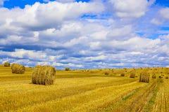 Gelbes rundes Straw Bales auf Stoppel-Feld Stockfotografie
