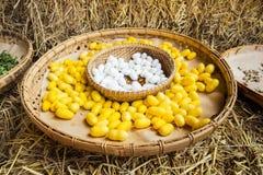 Gelbes Seidenraupenkokonoberteil durch den Silk Weg Lizenzfreies Stockfoto