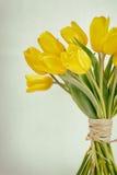 Gelbes Tulpenbündelkreuz verarbeitet Stockfotografie