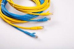 Gelbes und blaues Netz-Kabel mit geformtem Stecker RJ45 Stockbilder