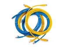 Gelbes und blaues Netz-Kabel mit geformtem Stecker RJ45 Lizenzfreies Stockfoto