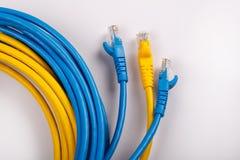 Gelbes und blaues Netz-Kabel mit geformtem Stecker RJ45 Stockbild