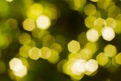 Gelbes und grünes Hexagon bokeh Stockbild