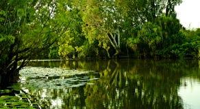 Gelbes Wasser Lizenzfreie Stockfotos