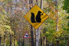 Gelbes Zeichen mit einem Bild des Eichhörnchens mit Nuss und Warnzeichen ` warnen, Elche ` Stockfotos