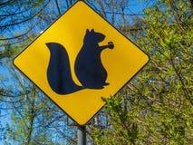 Gelbes Zeichen mit einem Bild von Eichhörnchen Lizenzfreie Stockbilder