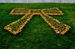 Veilchen und Tulpen Lizenzfreie Stockfotos