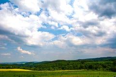 Gelbgrünfelder Lizenzfreie Stockbilder