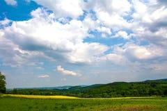 Gelbgrünfelder Lizenzfreies Stockbild
