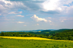 Gelbgrünfelder Lizenzfreies Stockfoto