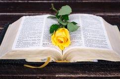 Gelbrose auf eine alte Bibel Lizenzfreies Stockbild