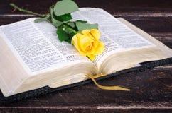 Gelbrose auf eine alte Bibel Lizenzfreie Stockbilder