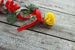 Gelbrose mit rotem Band Stockfotografie