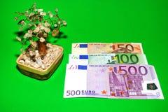 Geld-Baum und Euro Stockfoto