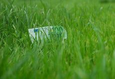 Geld bij gras Stock Afbeelding
