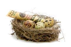 Geld, das in einem Nest mit Eiern liegt Lizenzfreies Stockfoto