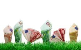 Geld, das im Gras wächst Stockfotos