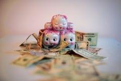 Geld, economie en geluk Royalty-vrije Stock Foto's