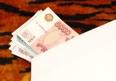 Geld in envelop op de achtergrond van het tijgerpatroon Royalty-vrije Stock Fotografie