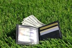 Geld in gras Royalty-vrije Stock Foto's