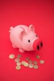 Geld in het spaarvarken Stock Foto