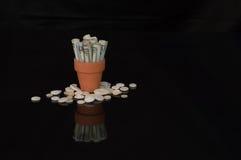 Geld im Terrakottatopf mit Knöpfen Lizenzfreies Stockbild