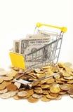 Geld im Warenkorb Lizenzfreies Stockbild