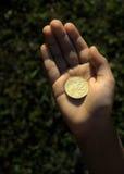 Geld in jonge geitjeshanden Stock Foto's