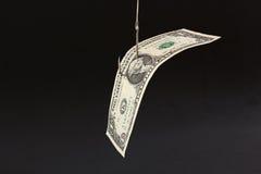 Geld-Köder Lizenzfreies Stockbild