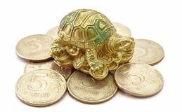 Geld-Münzen mit Schildkröte Lizenzfreie Stockfotos