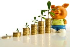 Geld met installatie en spaarvarken Stock Afbeelding
