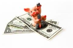 geld met Varken en muntstukken   Stock Foto's