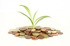 Geld montain Royalty-vrije Stock Fotografie